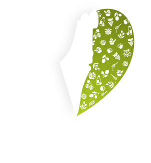 Lev Haolam